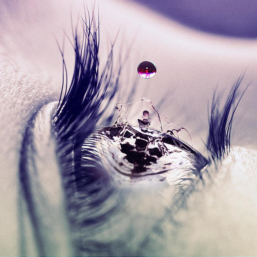 Eye Drop by Fagning