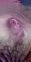 Black Owl Sun