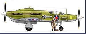 Veeblfitzer P-105A  Armadillo Fighter