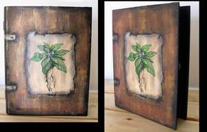 Box- Book Mandrake by oshuna