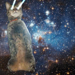 Space Cat! (commission) by jabbycat