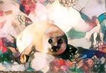 Dream Seal 6/2/17 - Fun, Simple, Exciting by MatthewandKatlayn