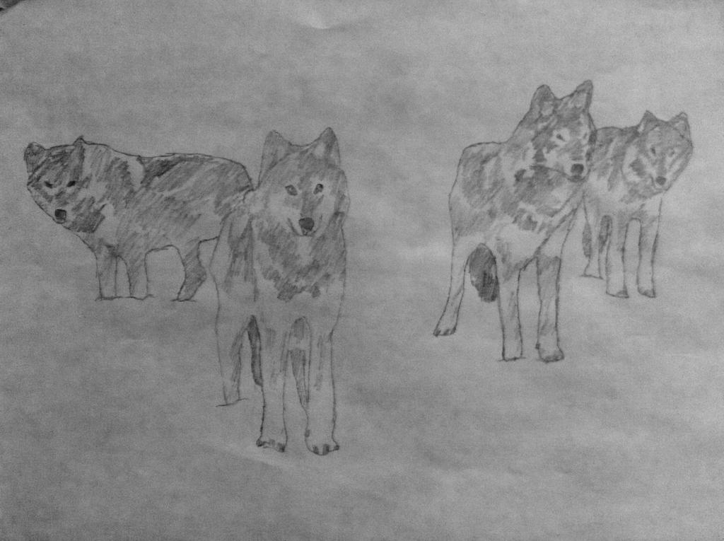Wolf Pack by ry00n