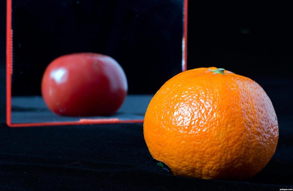 Orange-Tomato-4e69630a2f09f hires by DanikaMilles