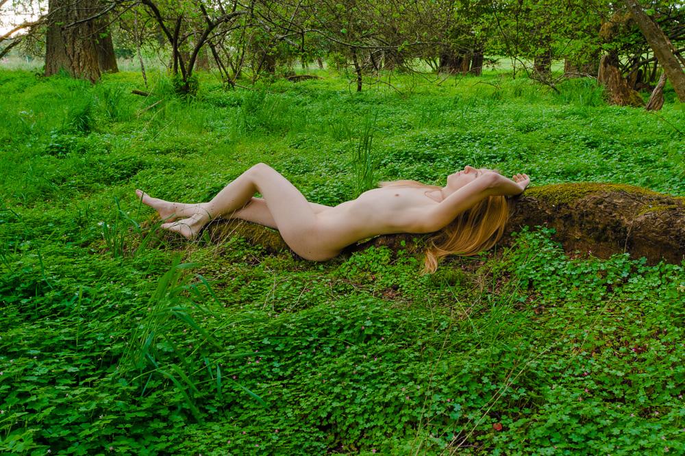 Lie in Wait by DanikaMilles