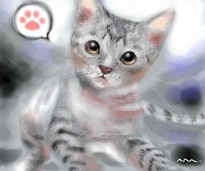 20050602 Gray Kitty by manzo
