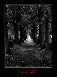 Dead Alley by chrusel
