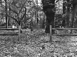 Graveyard by Silent-Broken-Wish