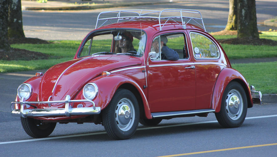 Bug With Roof Rack By Finhead4ever ...