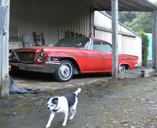 Doggone Chrysler by finhead4ever