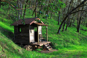 Cabin in the Spring by finhead4ever