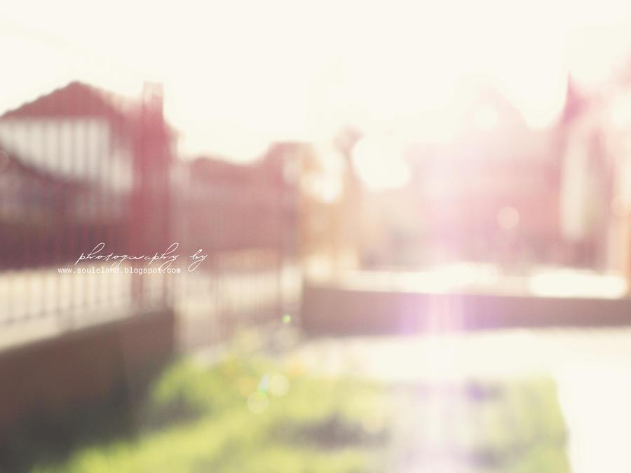 The garden by soule088