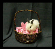 Bunny and Peeps basket by InKibus