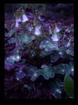 Glow by InKibus