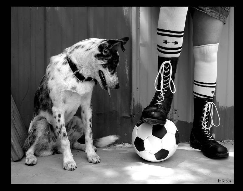 Black and white and soccer by InKibus