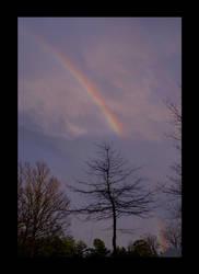 Rainbow by InKibus
