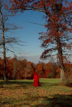 Autumn is a Journey