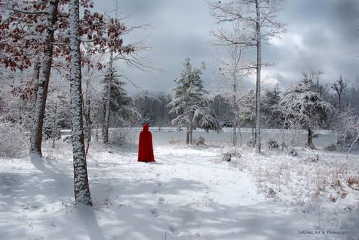 In a winter wonderland