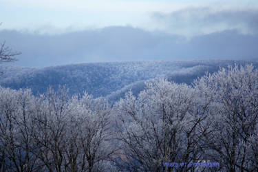 Well frosted Ozarks
