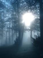 Blue sunrise by InKibus
