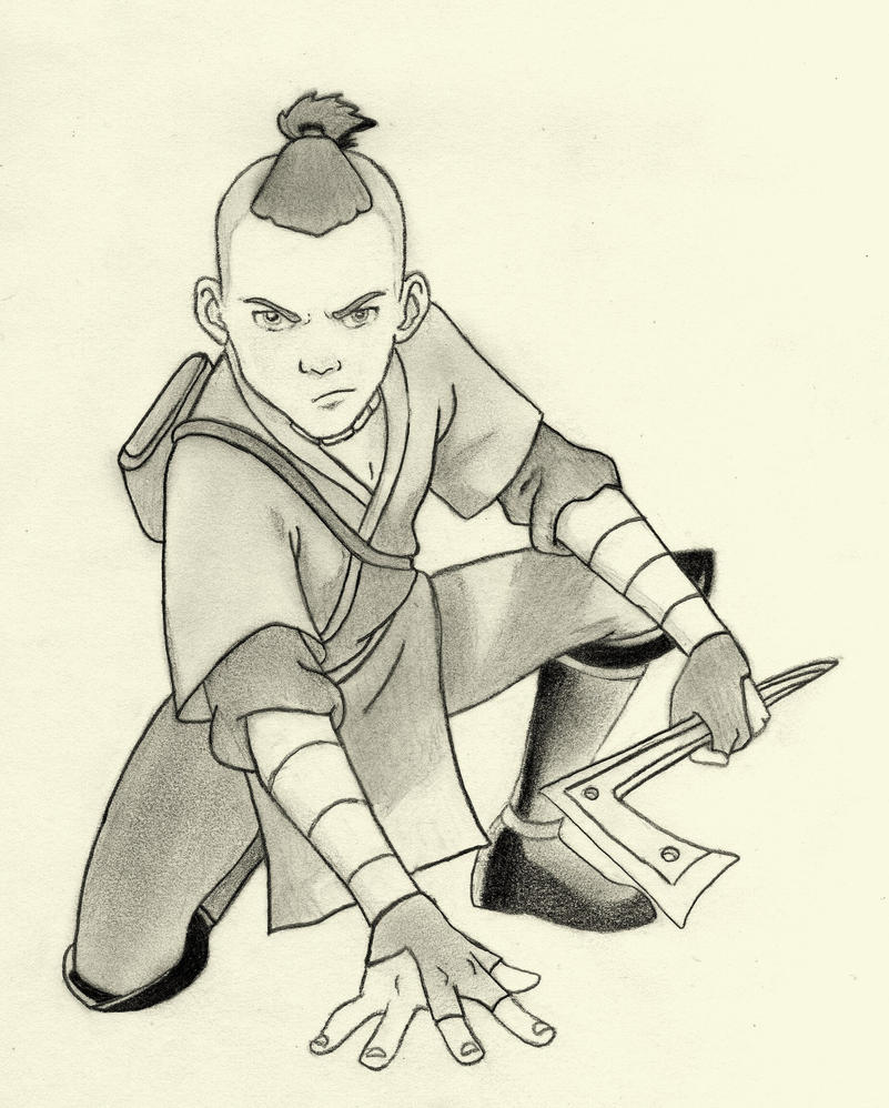 The Last Airbender Movie Appa: Sokka- Avatar By Darkknights35 On DeviantArt