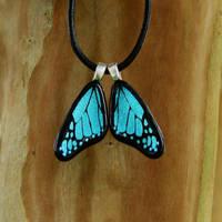 Custom Glass Blue Mini Wings by FusedElegance
