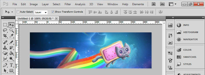 Photoshop CS5 - Nyan Cat by madmax124