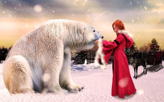 Winter encounter