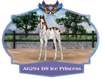 A6294 DS Ice Princess