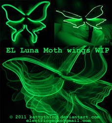 Luna Moth Wings WIP