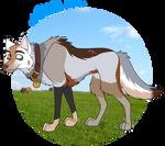 Fella the Farm Dog by MetalWolfGemstone