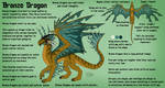 Bronze Dragon Reference Sheet