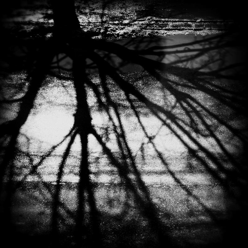 of love and shadows by PsycheAnamnesis