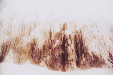 a tangerine dream by PsycheAnamnesis