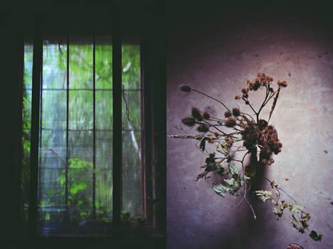 fleeting fragments of mundanity