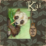 Kai's Introduction