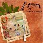 Acorn's Intro