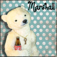 Marshall's Intro by montybearkins