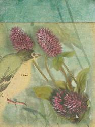 Thistle and Bird by montybearkins