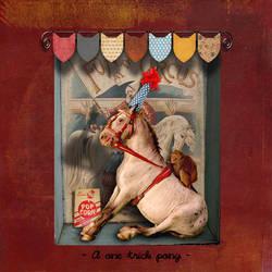A one trick pony by montybearkins