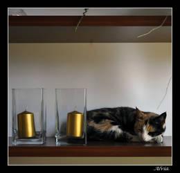 Susie- Framed by Alvia