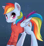 Dash with hoodie