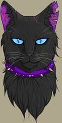 Scourge from Warriors (Animal Villains) by Troodontidae