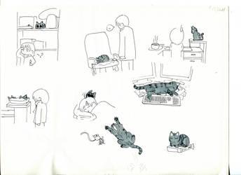 Sketch by Poticceli