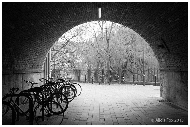 Bikes in Bath, UK 01 by sharvani