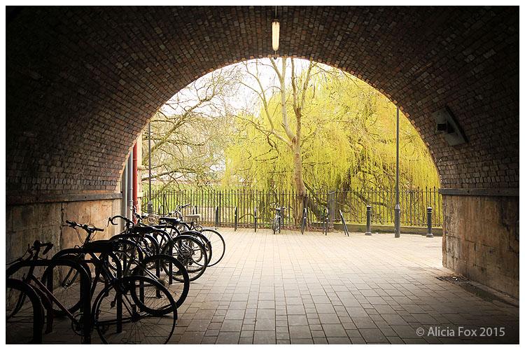 Bikes in Bath, UK 02 by sharvani