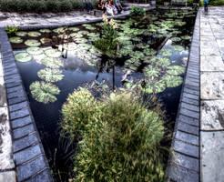 Panorama 3447 hdr pregamma 1 mantiuk06 contrast ma by bruhinb