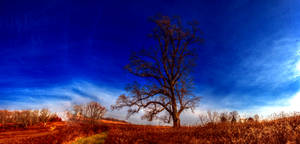 Panorama 3506 hdr pregamma 1 mantiuk06 contrast ma by bruhinb