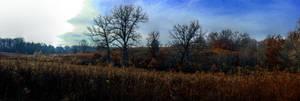 Panorama 3510 hdr pregamma 1 mantiuk06 contrast ma by bruhinb