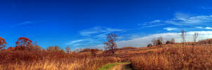 Panorama 3856 hdr pregamma 1 mantiuk06 contrast ma